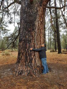 Abrazando el árbol más antiguo del parque